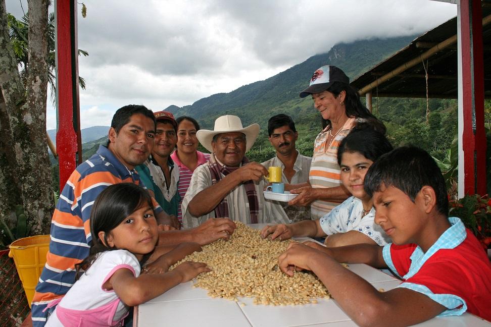 Familia cafetera colombiana produciendo café