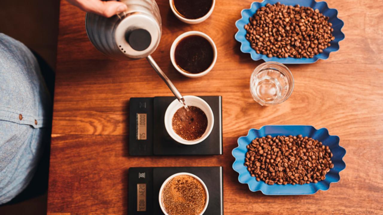 Cómo Se Determina La Calidad Del Café Qué Café
