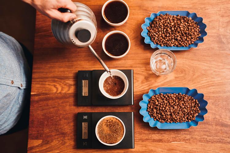 Preparación de la infusión de café para la cata.