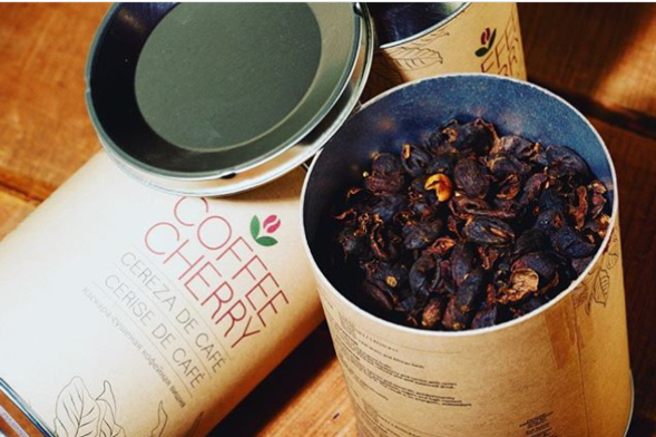 Cascaras secas de cerezas de café para la preparación de infusión o té.