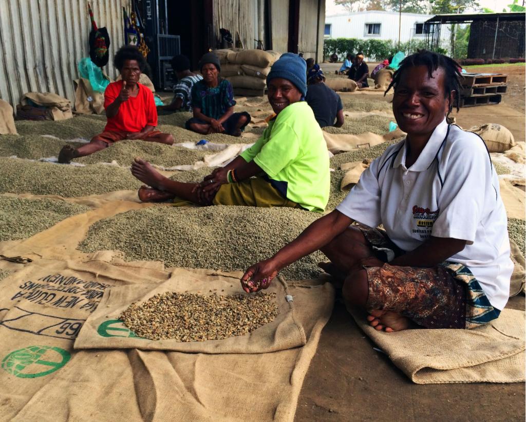 Mujeres escogiendo café en Papúa Nueva Guinea.