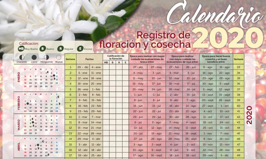Imagen que muestra el formato para llevar registros de floración en café.