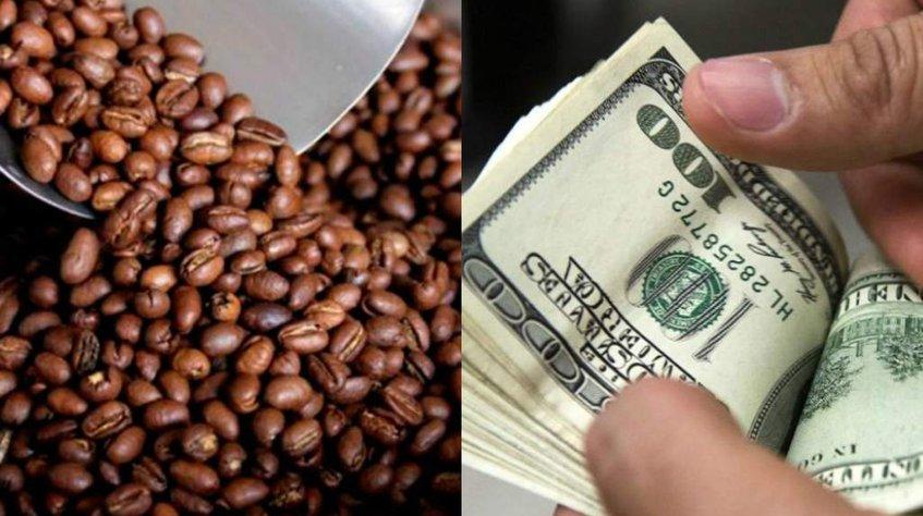 Importación y exportación de café: granos de café tostado y el pago de su precio en dólares.